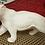 Thumbnail: Wild Cat