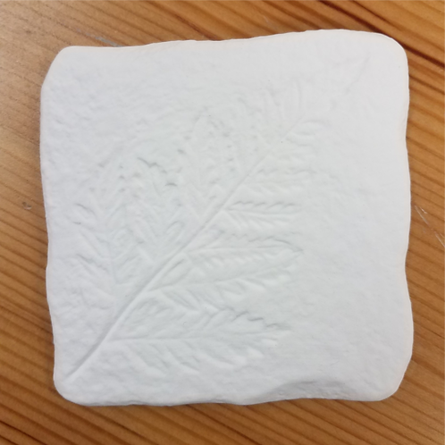Leaf Coaster - Fern Leaf