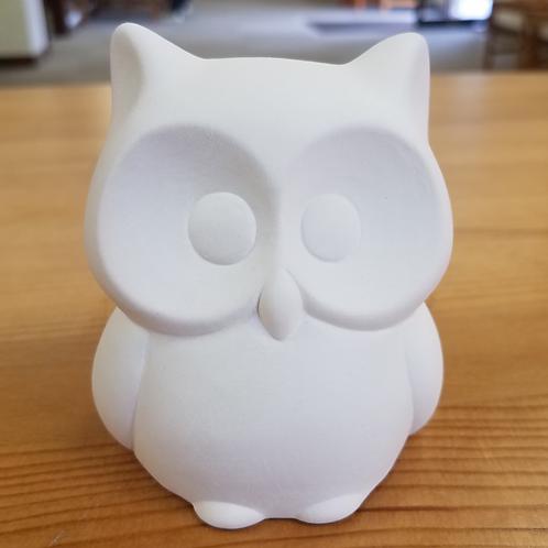 Chubby Owl