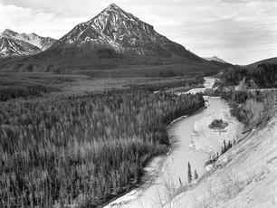 Kings Mountain, Southcentral Alaska.  Afga Ansco Type-C-1, 8x10 Ground Camera, 240mm Fujinon, Ilford HP5+.