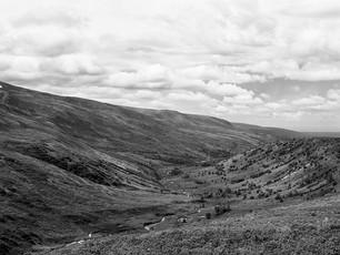 Willow Creek Gold Mining District.  Chamonix 045N-2, 90mm Schneider Kreuznach Super Angulon, Kodak TMax 400.