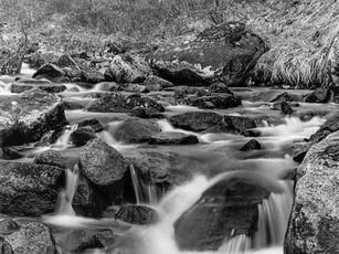 Miner's Creek, Independence Mine Complex, southcentral Alaska.  Mamiya RB67 Pro SD, 90mm Sekor, Fuji Acros.