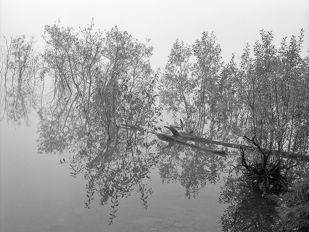 Misty morning at Eklutna Lake.  Mamiya RB67 Pro SD, 90mm Sekor, Fuji Acros.