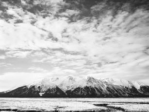 Sunrise over ice laden Turnagain Arm.  Chamonix 045N-2, 90mm Schneider Kreuznach, Kodak TMax 100.