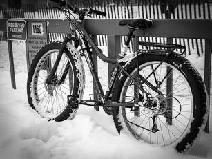 Winter transportation.  Nikon F5, 50mm Nikkor, TMax 400.