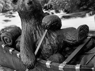 """""""Bear""""-ing it.  Mamiya C3, 105mm Mamiya Sekor, Kodak TMax 400."""