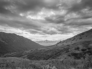Alpine vista at Hatcher's Pass.  Nagaoka 4x5 Wood Field, 90mm Schneider Super-Angulon, Kodak TMax 400.