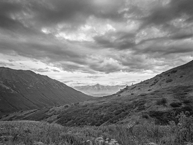 Alpine vista at Hatcher's Pass.  Nagaoka 4x5 Wood Field, 90mm Schneider Super-Angulon, Kodak TMax 400.
