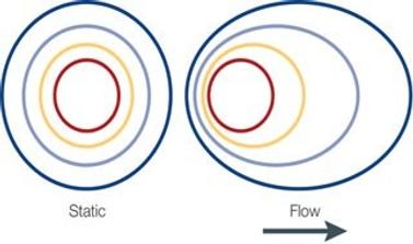 interstitial_flow_and_autologous_chemota