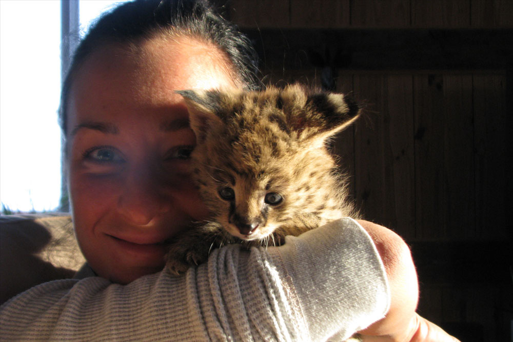 Emma and serval kitten