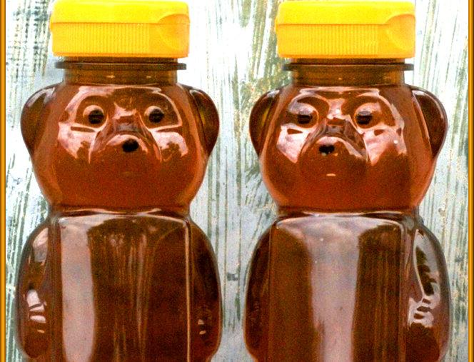 Raw Honey Bear