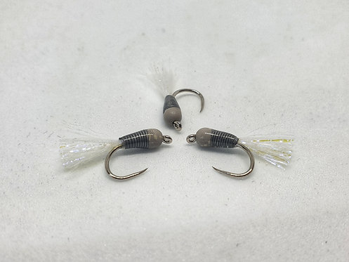 Speckled Grey Stalking Bug ( Tungsten ) CO