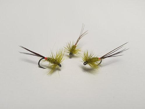 Olive Mayfly
