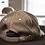 Thumbnail: casquette LR  grise