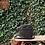 Thumbnail: Arthur&Aston1438-25 châtaigne