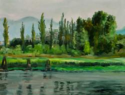 Fraser River 寫生2