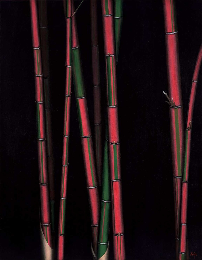 Candy Cane Bamboo