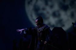 Ballet in the moonlight