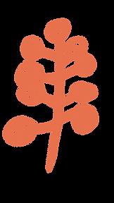 Orange Tree-01.png