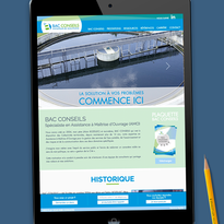 Site internet (Bac Conseils)