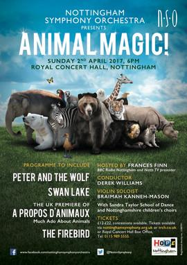Concert Animal Magic, avril 2017.jpg
