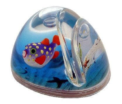 Swell Fish