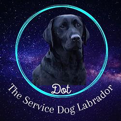 Dot logo_edited.jpg