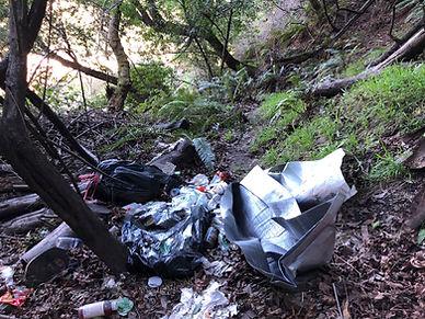Strawberry Canyon Trashed.jpg