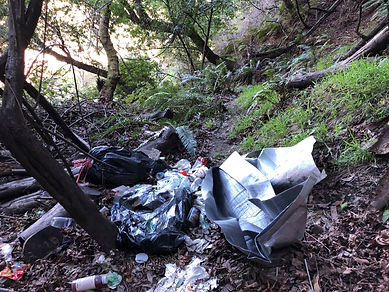 Strawberry Canyon Trashed.jpg