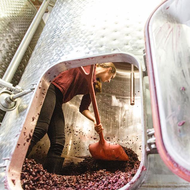 Weinpresse-Weingut-Eppelmamnn-92.jpg