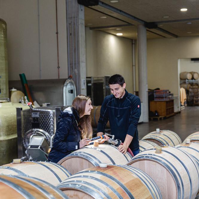 Weinpresse-Weingut-Eppelmamnn-38.jpg