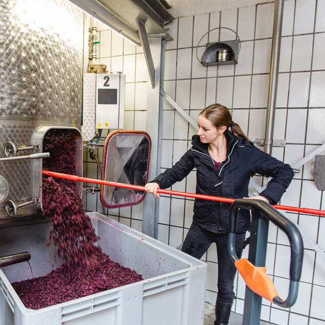 Weinpresse-Weingut-Eppelmamnn-75.jpg