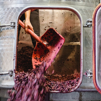 Weinpresse-Weingut-Eppelmamnn-97.jpg