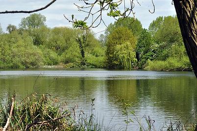 Marsh Pit 1.jpg