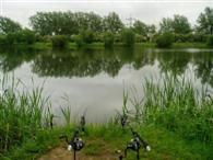 Carp Fishing - North House Lake