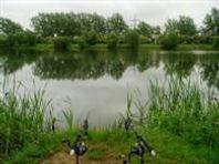 Carp Fishing - North House Lake
