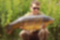 Mirror Carp - North House Lake