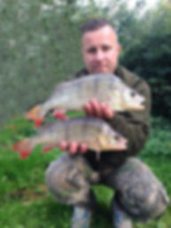 Grand Union Canal Perch