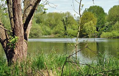 Marsh Pit 2.jpg