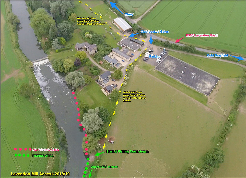 Downstream_Drone_Shot_Map.jpg