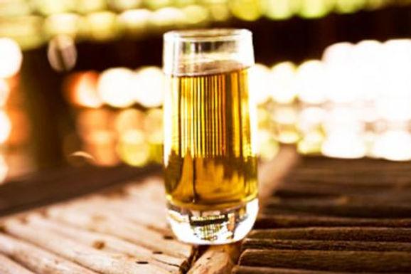 Es momento de impulsar la industria del bacanora al nivel del tequila y el mezcal