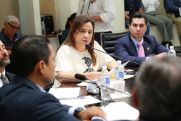 Comparece Secretario de Economía y aprueba Comisión proyecto de dictamen