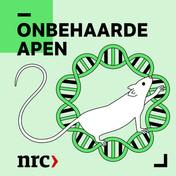Science Podcast   NRC Onbehaarde Apen