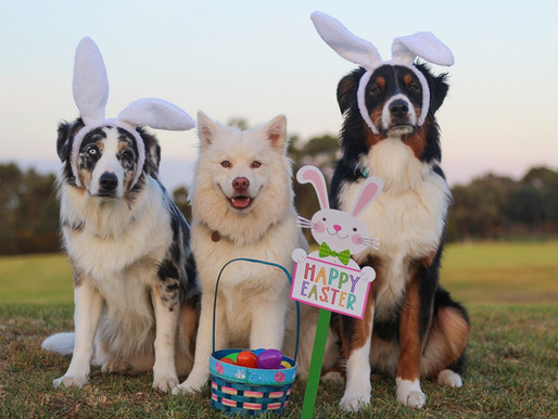 Happy Easter!!! - Closed 4/4