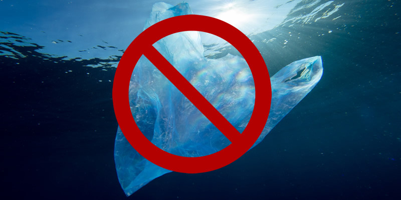 BAN PLASTIC BAGS IN YOUR COMMUNITY