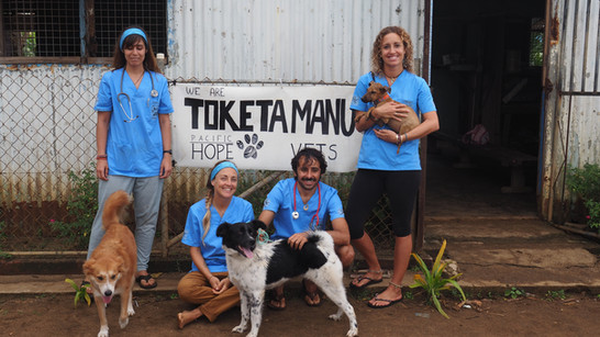 Running a Vet Clinic in a Remote Tropical Paradise