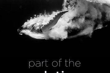 part of the solution e-book cover