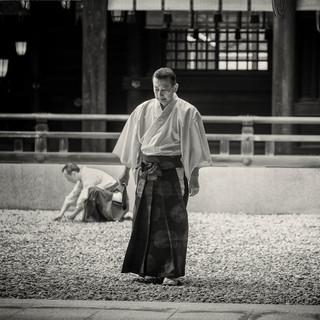 Japanese MonkII.jpg