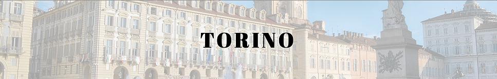 visite guidate e musei a Torino.png