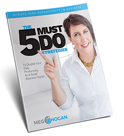 5 Must Do Strategies, double your daily income, small business owner, productivity, author, business coach, portfolio mastery, meg hogan business coaching, entrepreneur, peak productivity guide, time management,